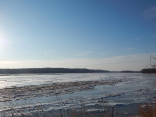 Platte Frozen